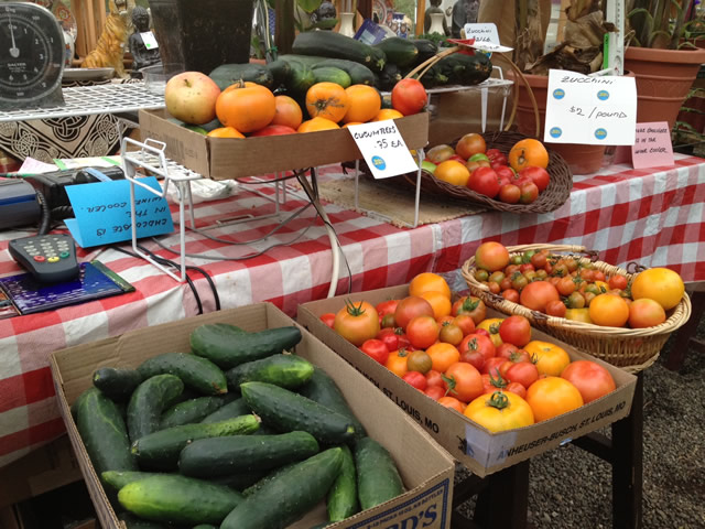 Tomatoes and Cucumbers grown fresh at the Greenhouse!