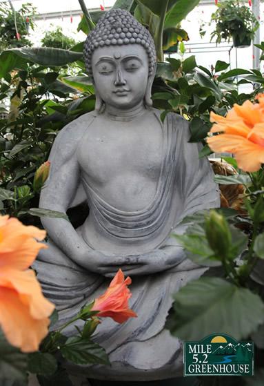 white_buddha